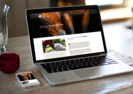 Website examples by Media 3 Group